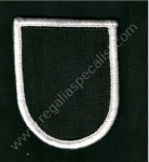 US Cloth Beret Flashes