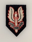 Special Air Service Officer's wire beret badge