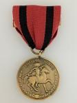 American Indian Wars Medal