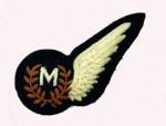 R.A.F. Meteorologist 'M' cloth half wing.