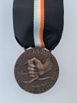 Fascist Anti Partisan Medal