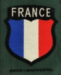 Wehrmacht FRANCE French Foreign Volunteers cloth sleeve shield insignia.