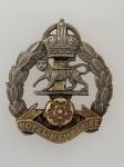 Royal Hampshire Regiment metal cap or beret badge ANTIQUED.